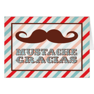 Mustache Gracias Thank you notes