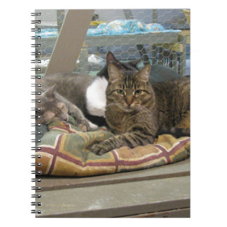 Mustang and Cats Spiral Note Books
