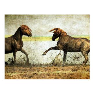 Mustang Battle Postcard
