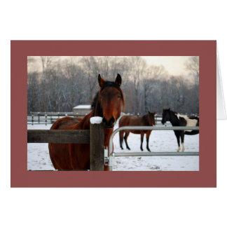 Mustang Holiday Card