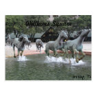 Mustangs of Las Colinas # 27 Postcard