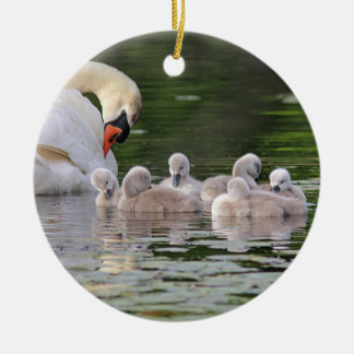 Mute swan and cygnets round ceramic ornament