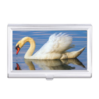Mute swan, cygnus olor business card holders