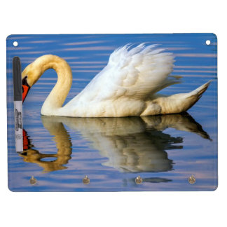 Mute swan, cygnus olor dry erase board with keychain holder