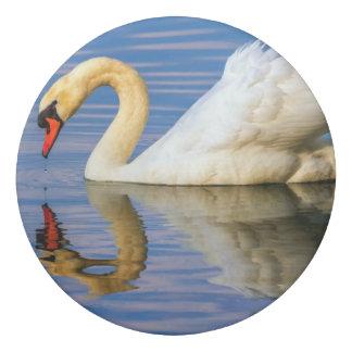 Mute swan, cygnus olor eraser