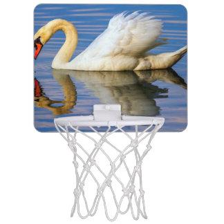 Mute swan, cygnus olor mini basketball hoop
