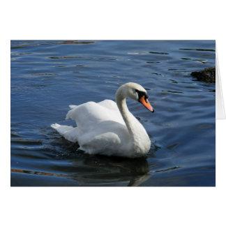 Mute Swan Family Greeting Card