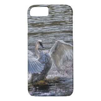 Mute Swan Preening in Sunlit Lake Waters iPhone 7 Case
