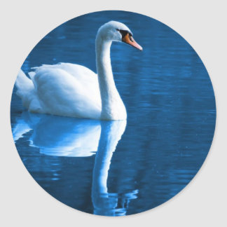 Mute Swan Stickers
