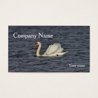 Mute Swan Swimming Business Card