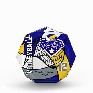 MVP Volleyball Player | Blue, Gold & Gray