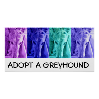 Mx4 Adopt a Greyhound Poster