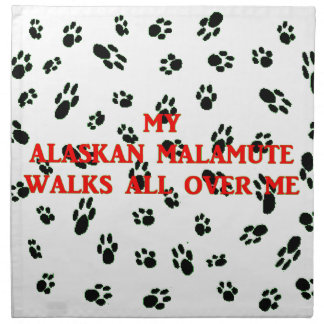 my alaskan malamute walks on me napkin