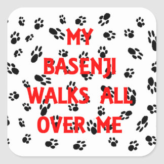 my basenji walks on me square sticker