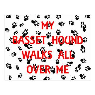 my basset hound walks on me postcard