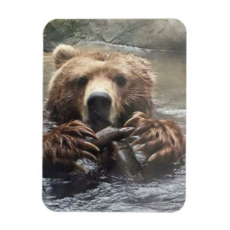 My Bear Rectangular Photo Magnet