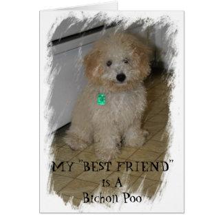 "MY ""BEST FRIEND"" is A Bichon Poo Card"