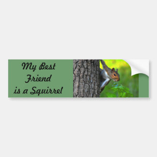 My Best friend is a Squirrel  II Bumper Sticker