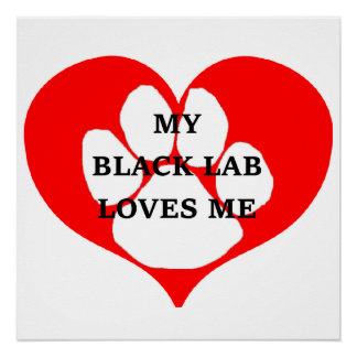 my black lab loves me poster
