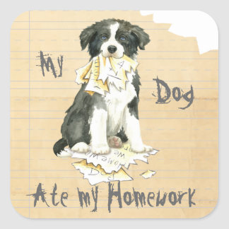 My Border Collie Ate my Homework Square Sticker