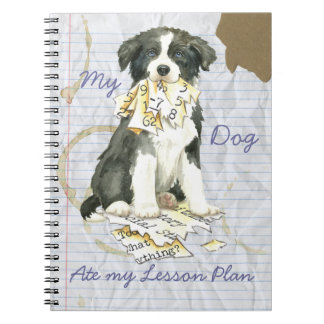 My Border Collie Ate my Lesson Plan Notebook