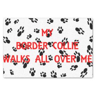 my border collie walks on me tissue paper