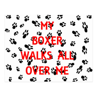 my boxer walks on me postcard