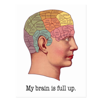 My Brain is Full Up Postcard