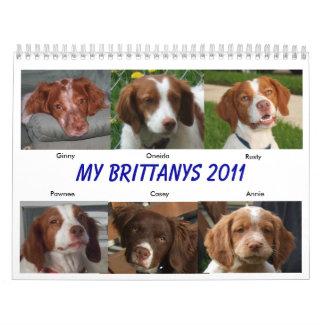 My Brittanys 2011 Wall Calendars
