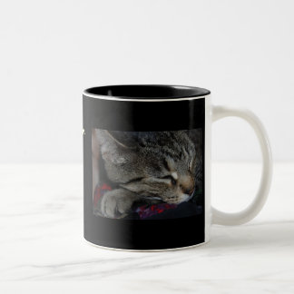 My Children All Have Paws! Cat Mug
