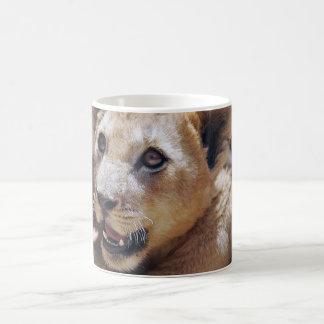 My Cute Lion Face Coffee Mugs