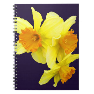 My Daffodil Notebook (add your name)