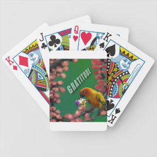 My deepest thanks to you. bicycle playing cards
