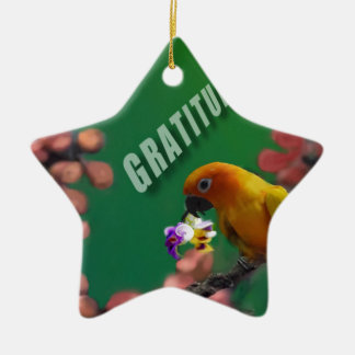 My deepest thanks to you. ceramic star ornament