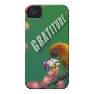 My deepest thanks to you. iPhone 4 case
