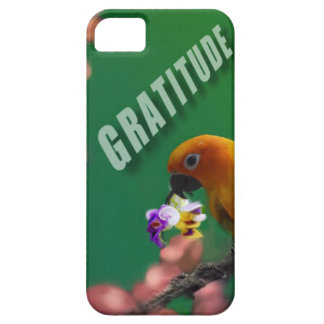 My deepest thanks to you. iPhone 5 case