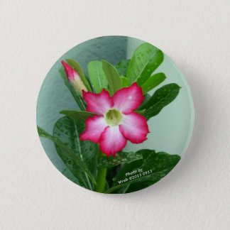 My Desert Rose 2 Inch Round Button