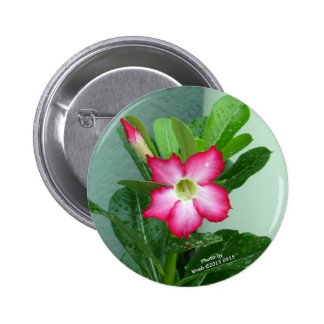 My Desert Rose 2 Inch Round Button