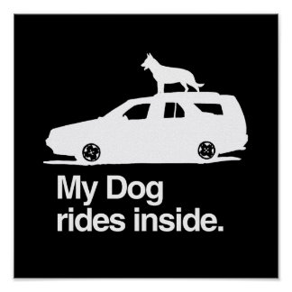 My dog rides inside - png posters