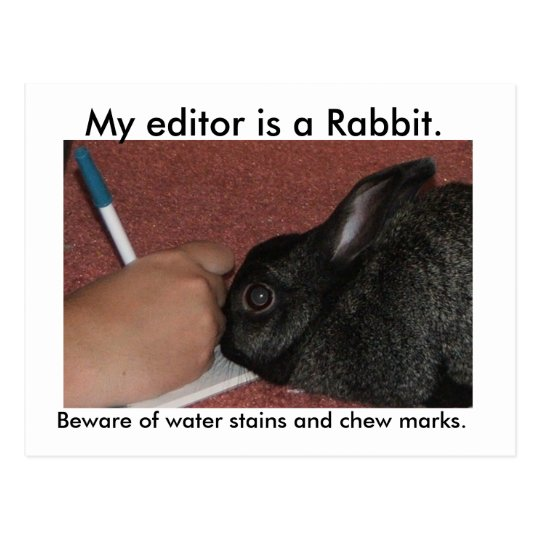 My editor is a Rabbit. Postcard