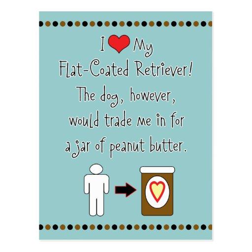My Flat-Coated Retriever Loves Peanut Butter Post Card