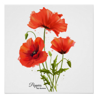 My flowers Poppies Poster