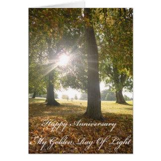 My Golden Ray Of Light Anniversary Card