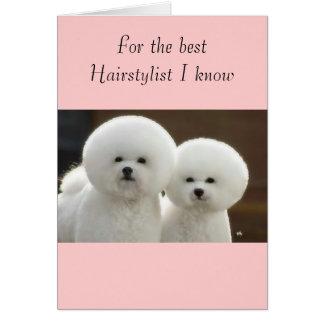 my hair stylist card