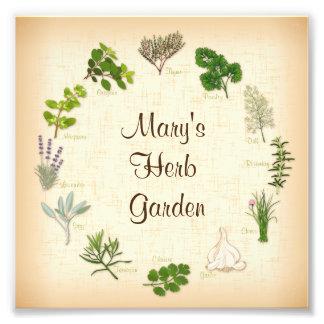 My Herb Garden Photographic Print
