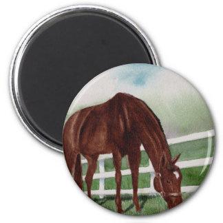 My Horse 2 Inch Round Magnet