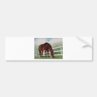 My Horse Bumper Sticker