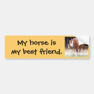 My horse is my best friend sticker
