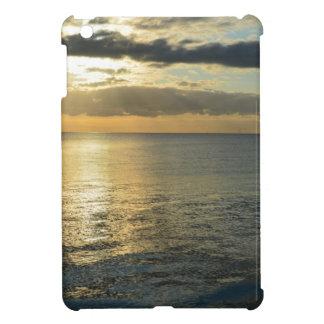 My impressions of Holland iPad Mini Cases