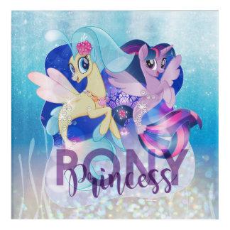My Little Pony | Skystar and Twilight - Princess Acrylic Wall Art